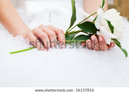 Bride with peony flower in hands - stock photo