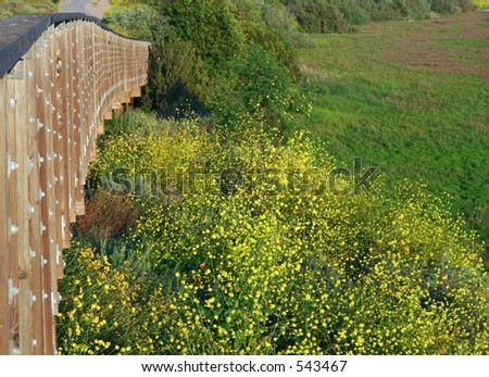Bridge crossing over a meadow - stock photo