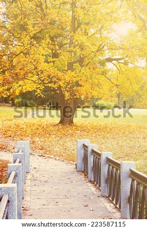 Bridge from the marble in the autumnal park  - stock photo