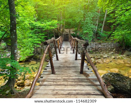 Bridge in bright forest. Natural composition - stock photo