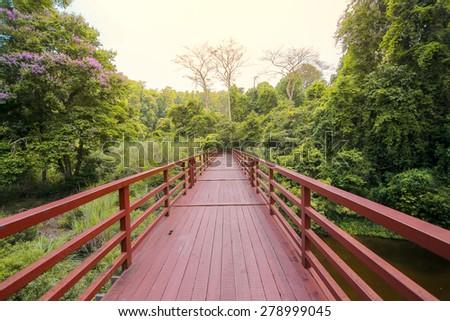Bridge in forest - stock photo