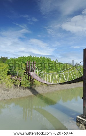 Bridge in mangrove forest - stock photo
