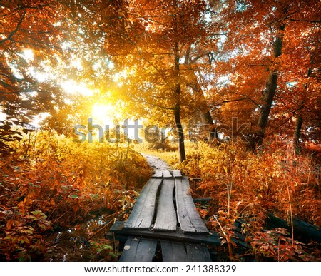Bridge in the autumn forest with red leaves - stock photo