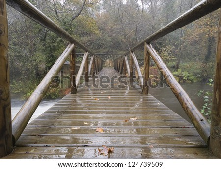 Bridge in the forest on a rainy day