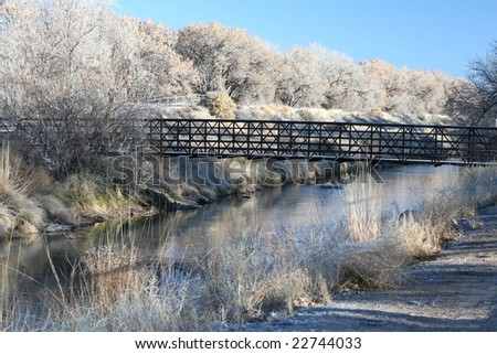 Bridge in the frost