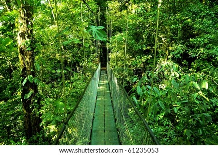 Bridge in the jungle of Costa Rica - stock photo