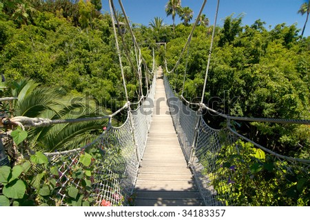 bridge inside tropical jungle - stock photo