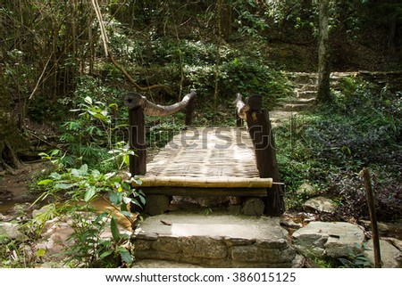 Bridge made of bamboo in the forest.