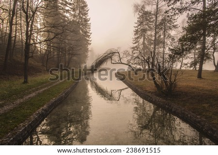 Bridge over a mystic river in Forest. Mist is over the river covering the forest and sun rays are penetrating through. Scenic and atmospheric sunrise on Sobec in Slovenia. - stock photo