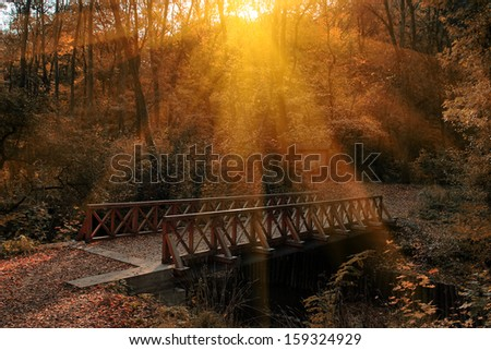 Bridge over river in autumn forest - stock photo