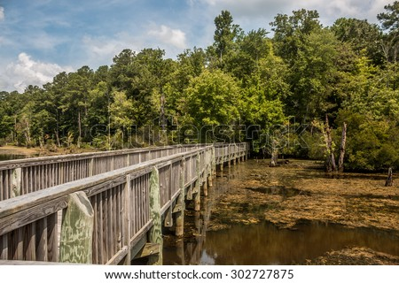 Bridge over swamp and leading into forest in Newport News Park, Newport News, Virginia. - stock photo