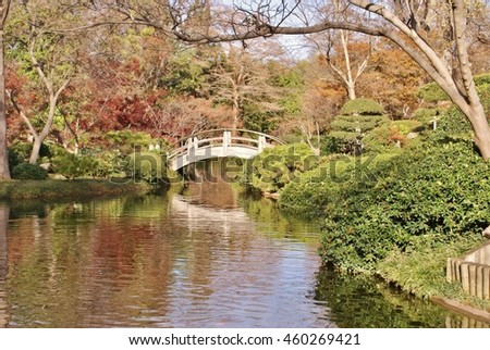 Bridge over the pond in fall
