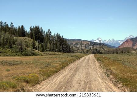 Bridger-Teton National Forest - stock photo