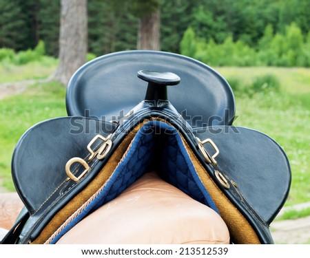 Bridle and horse dressage saddle - stock photo