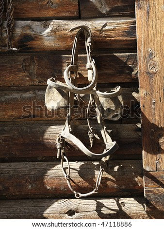Bridle with blinders hanging on an old weathered wooden stable. - stock photo
