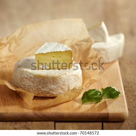 brie and camembert cheese - stock photo