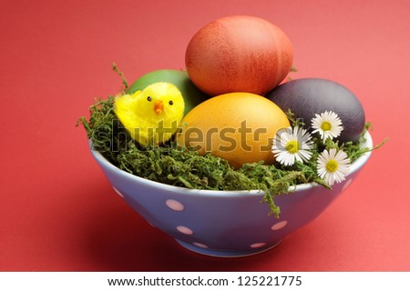 Bright and cheerful Happy Easter still life with rainbow color eggs in blue polka dot bowl against a red background. - stock photo