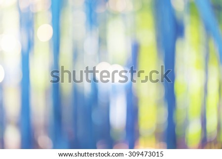 Bright blurred bamboo forest abstract background at sunrise - stock photo