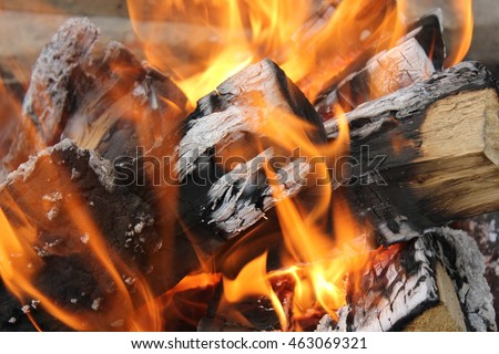 Bright burning fire of pine wood at fireplace