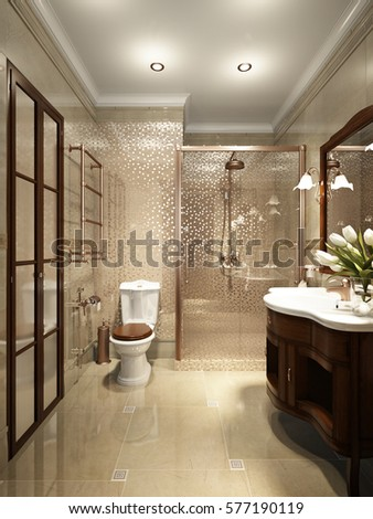 3d rendering. Bright classic traditional laundry room and bathroom interior  design in large luxury house with dark wood