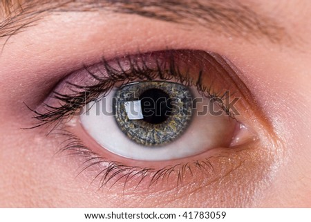bright eye of one attractive young woman - stock photo