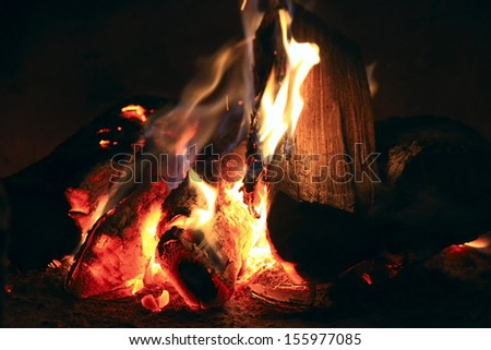 Bright fire in the fireplace. Burning wood photographed close. - stock photo
