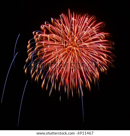 Bright Firework on the black sky background