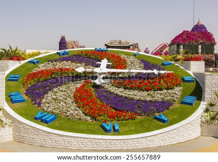 bright floral clock in the Miracle Garden in Dubai - stock photo