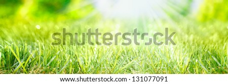 Bright fresh Spring banner with rays of light from a sunburst shining on a lush grassy green meadow - stock photo