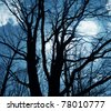 bright full moon behind some tree branches - stock photo