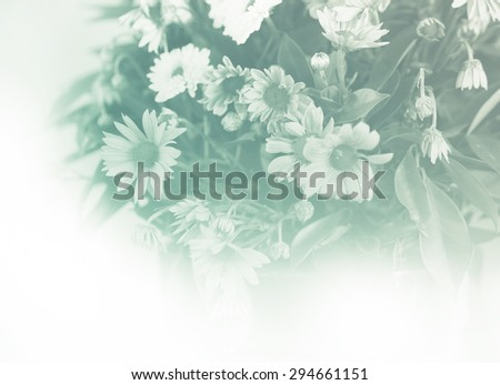 Bright Glowing Retro color of mixed beautiful flower