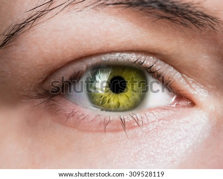 bright green eye close up - stock photo