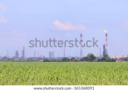 Bright green field with corn and Oil Refinery on horizon at sunny summer day - stock photo