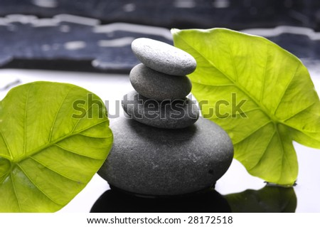 bright green leaf and stack stones with water drops - stock photo