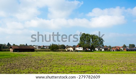 Bright green meadows and blue sky photo for you - stock photo