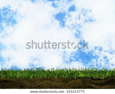 bright growing green grass on a blue sky backgrounds - stock photo