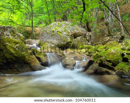 Bright jungle with fast river. Natural landscape - stock photo