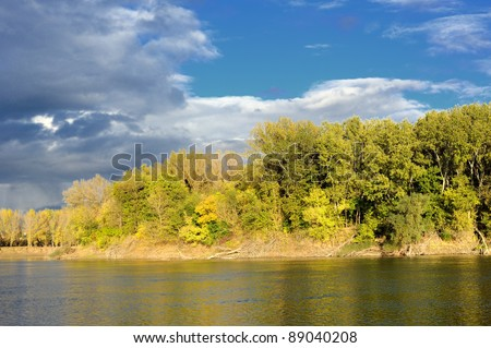 bright landscape. forest, river and sky