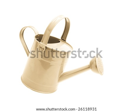 bright metal watering can