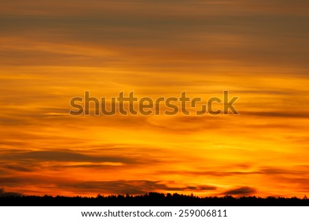 Bright orange sunset over dark black forest - stock photo
