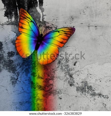 bright rainbow butterfly on monochrome grange wall - stock photo