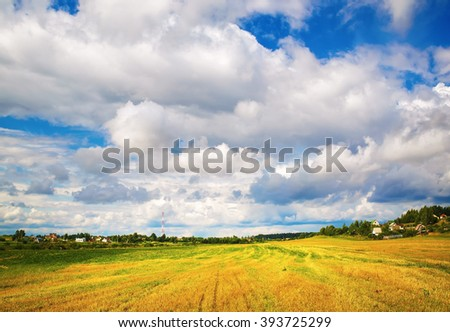 Bright rural landscape with field of cut grass and bright blue sky with cumulus clouds. Sunny day in the countryside. - stock photo