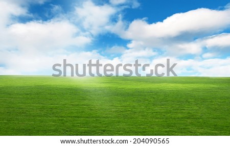 bright sky with field in sunlight