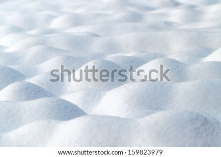 Bright snowdrift background with shallow depth of field.