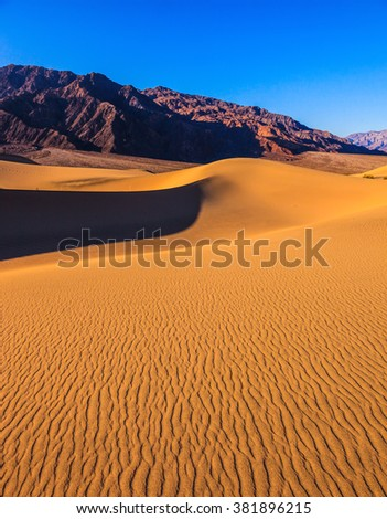 Bright solar morning in picturesque part of Death Valley. Gentle slopes of sandy barkhans shine orange light. Mesquite Flat Sand Dunes