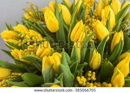 Bright spring bouquet of tulips and mimosa flowers. Mother's Day or Easter theme. - stock photo
