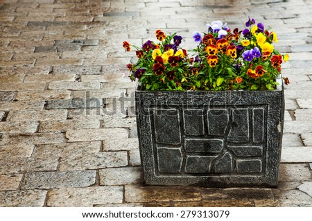 Bright stone flowerpot on pebble - stock photo