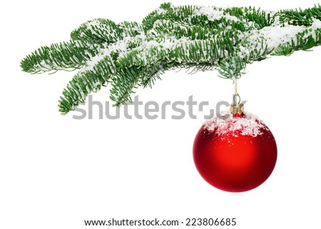 Bright studio shot of an isolated red Christmas bauble hanging from a fresh green snow-covered fir twig - stock photo