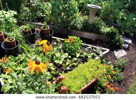 Bright summer vegetable garden and flower bed.