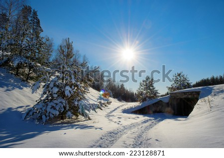 bright sun shining over the edge of the forest, frosty winter day - stock photo